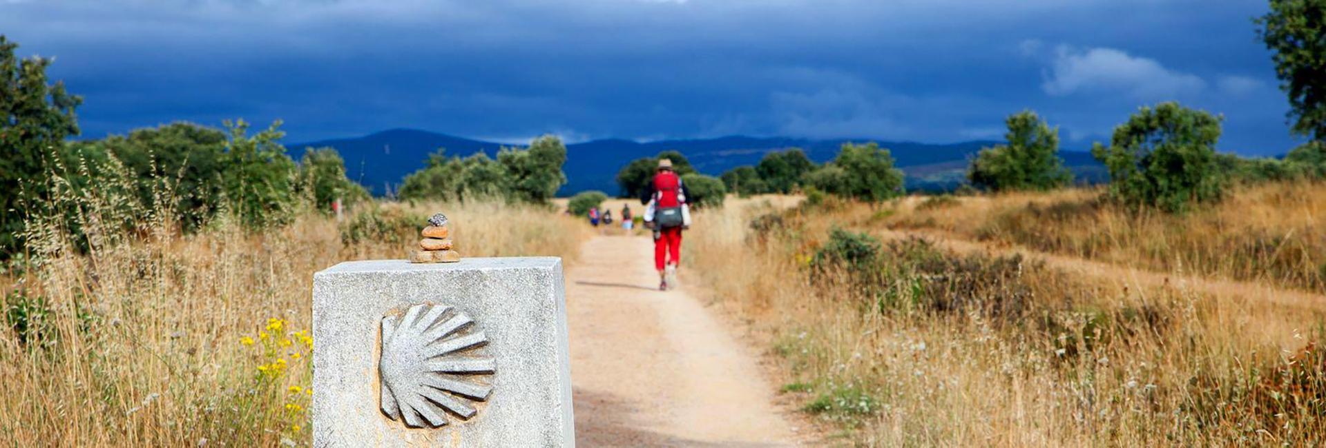 На Край Земли по Камино Францес. Испания.